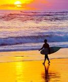Surfer at sunset. Bali island Stock Photos