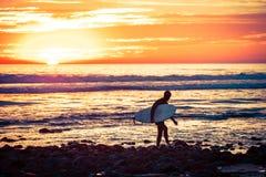 Surfer sunset Stock Image