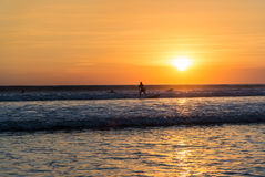 Surfer at sunset. In Kuta beach , Bali , Indonesia stock photography