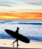 Surfer at sunset, Portugal Royalty Free Stock Photography