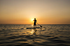 Surfer in the sunset Stock Images
