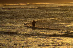 Surfer and Sunset Royalty Free Stock Photo