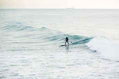 Surfer on sup board on ocean waves. Stand up paddle boarding in ocean. Surfer riding on stand up paddle board on breaking wave Royalty Free Stock Photography