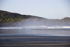 Surfer sur la baie brumeuse de Cox, Tofino, Colombie-Britannique, Canada Photo stock