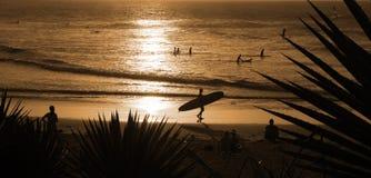 Surfer sur la plage Photo stock