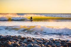 Surfer on the ocean wave at sunset or sunrise. Winter surfing in wetsuit. Surfer with surfboard on beach at sunset or sunrise. Surfer and waves Stock Images