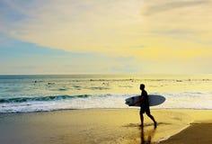 Surfer walking surfboard tropical beach. Surfer with surfboard walk on the tropical beach at sunset. Bali island, Indonesia Royalty Free Stock Photo