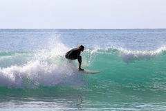 Surfer surfing in the Caribbean Sea. Surfer surfing the waves in the Caribbean Sea royalty free stock photo