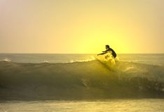Surfer on the top of the wave. With sunset Stock Images