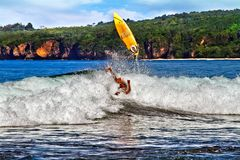 The surfer royalty free stock images