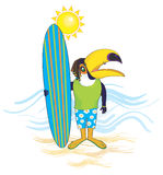 Surfer toucan Royalty Free Stock Images