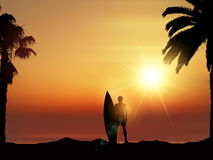 Surfer in tropical landscape Stock Photos