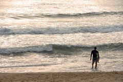 Surfer wading into water early morning. Male surfer heading into ocean carrying surfboard Stock Image