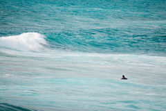 Surfer waiting for the wave. Shot in Sardinia, Italy Stock Photography