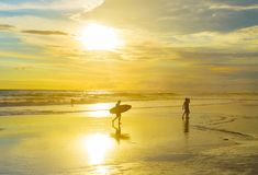Surfer with surfboard, tropical beach Royalty Free Stock Photos