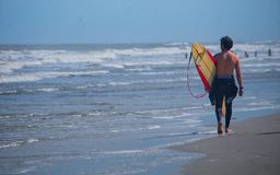 Surfer walking down beach Stock Photography