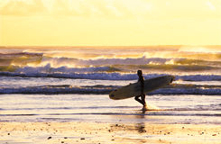 Surfer walking sunset Stock Photos