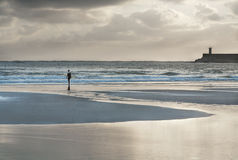 Surfer walking  to the sea at sunset Stock Photography