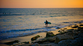 Surfer Walks into Pacific Stock Images