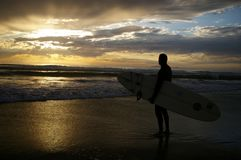 Surfer Watching the Sunset Royalty Free Stock Image