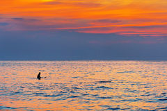Surfer in the water at sunset Royalty Free Stock Photos