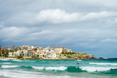 Surfer in the waters of Bondi Beach Stock Image