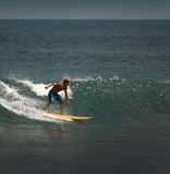 Surfer on the wave Stock Photography