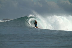 Surfer on wave, Indonesia Royalty Free Stock Image