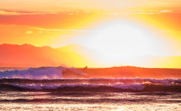 Surfer on the wave. Surfer rides the wave during sunset Royalty Free Stock Photos