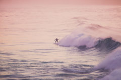 Surfer on a wave. A surfer riding a wave at sunrise stock image