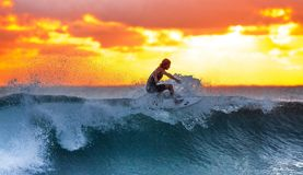 Surfer, Wave, Sunset Royalty Free Stock Photo