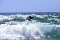 Surfer. On the waves fuertaventura Stock Image