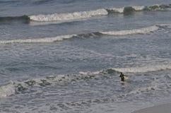 Surfer weg für Abenteuer lizenzfreie stockfotos
