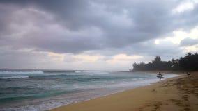 Surfer-Weg-Ozean-Küstenlinien-Strand-bewölkte stürmischer Tagesufer-Brandung stock video footage