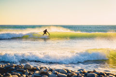 Surfer in wet suit on wave at sunset or sunrise. Surfer in ocean and waves Stock Photo