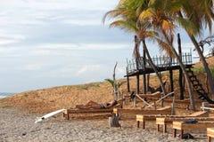 Surfermädchen, das auf einem Sonnenruhesessel unter den Palmen übersehen den Ozean während des Sonnenaufgangs stillsteht Lizenzfreie Stockfotos