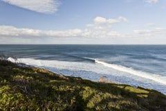 Surfers à la plage de Bells Images libres de droits