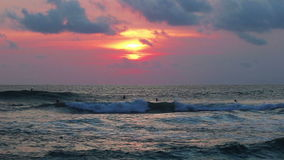 Surfers βραδιού στον ωκεανό απόθεμα βίντεο