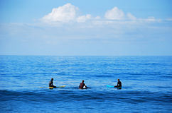 Surfers πινάκων που περιμένουν ένα κύμα στο Λαγκούνα Μπιτς, Καλιφόρνια στοκ φωτογραφίες με δικαίωμα ελεύθερης χρήσης