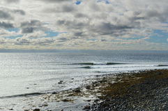 Surfers που μοιράζεται ένα κύμα στοκ φωτογραφία