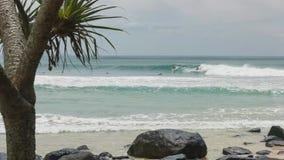 Surfers που οδηγά ένα κύμα στο greenmount στο qld στοκ εικόνα με δικαίωμα ελεύθερης χρήσης