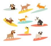 Surfers σκυλιών καθορισμένα, διανυσματικές απεικονίσεις κινούμενων σχεδίων απεικόνιση αποθεμάτων