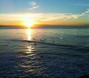 Surfers στην ανατολή σε Santa Cruz στοκ εικόνες