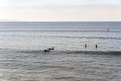Surfers στην παραλία Malibu, που περιμένει τα κύματα στο θερινό χρόνο σε Καλιφόρνια στοκ φωτογραφίες με δικαίωμα ελεύθερης χρήσης