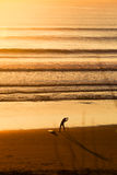 Surfers στην παραλία στο ηλιοβασίλεμα Στοκ Φωτογραφία