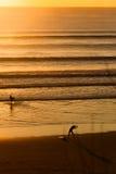 Surfers στην παραλία στο ηλιοβασίλεμα Στοκ φωτογραφία με δικαίωμα ελεύθερης χρήσης