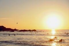 surfers stockfotografie
