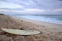 Surfers beach Stock Images