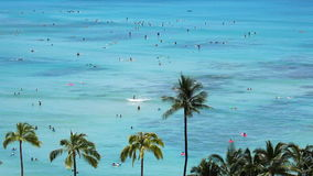 Surfers at Beach Resort Paradise. High view at the beach resort in Waikiki, Hawaii. Lots of people surfing, swimming and enjoying the water stock footage