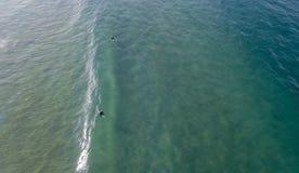 Surfers bij opstelling 01 royalty-vrije stock afbeeldingen